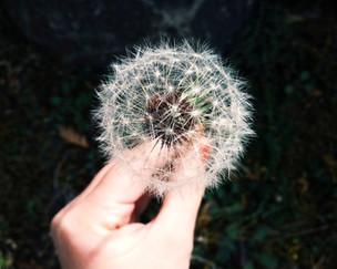 第44辑《Follow Me-经历与耶稣同行的喜悦》(英语/中文字幕)