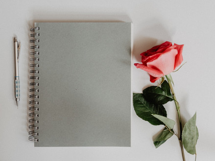 THE OLD SPIRAL NOTEBOOK