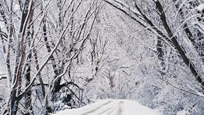 New Winter Outlook.