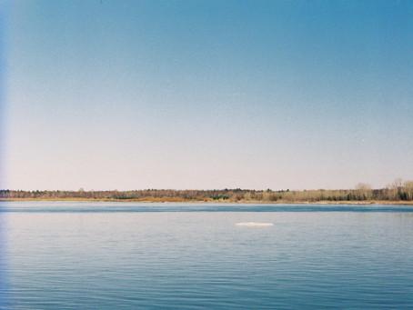 Министерство природных ресурсов и экологии. Национальный проект