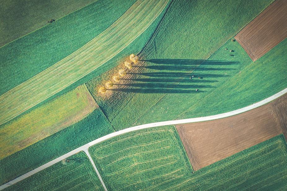 Conservation agriculture farm | Rize ag