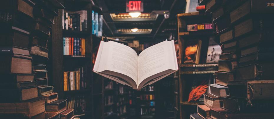 Mahmut Yıldırım Yazdı- Kanon, Kanonu Anlama Çabaları ve Edebiyat Kanonu Üzerine