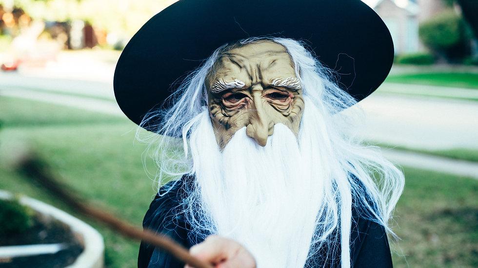 Initiation la Sagesse de Merlin