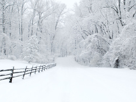 Winter is coming!  Learn hand safety tips for snow blower use.
