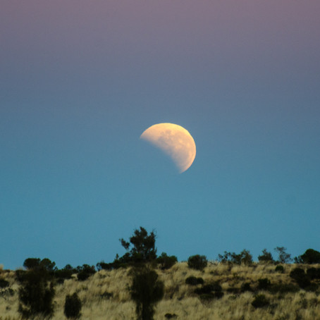 Full Flower Blood Moon Eclipse