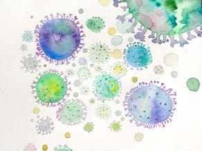 Bakterien: Freunde oder Feinde?