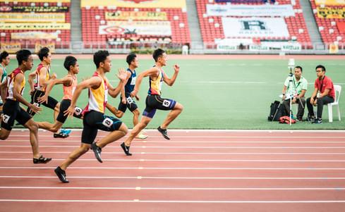 Coordenação e Estabilidade intra, inter e entre músculos