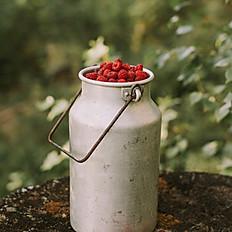 Fruchtshake Himbeer