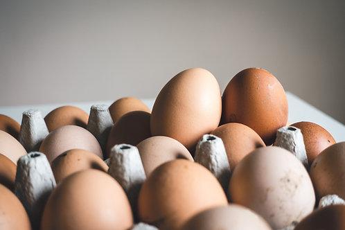 6 BROWN free range eggs.