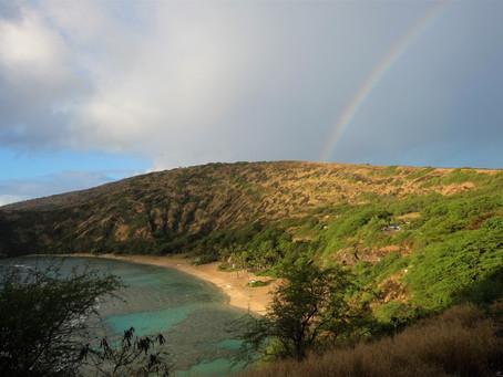 Travel Over the Rainbow to Hawai'i