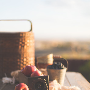 Picnic Checklist and Extras