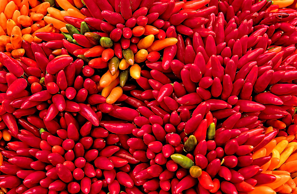 Lots of red, yellow and green chilies
