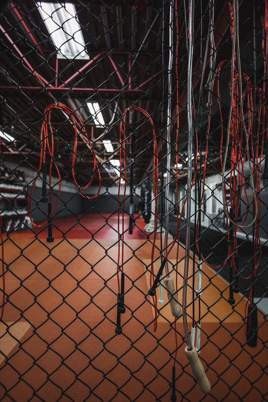 Bjj Report MMA Gym