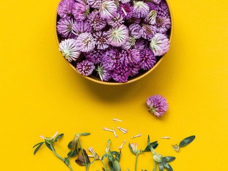How can herbal formulas really help me?
