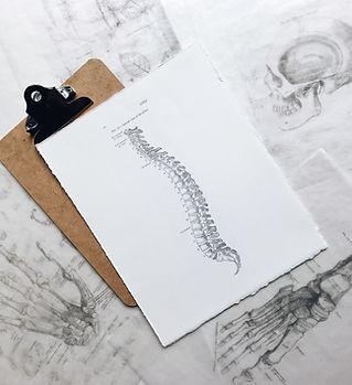 Spinal rehabilitation program