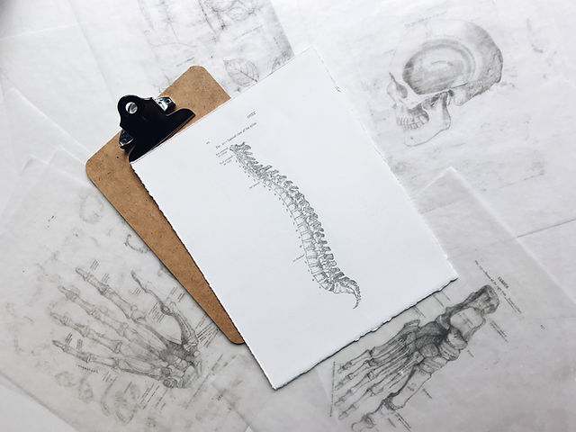 Chiropractic Frequently Asked Questions