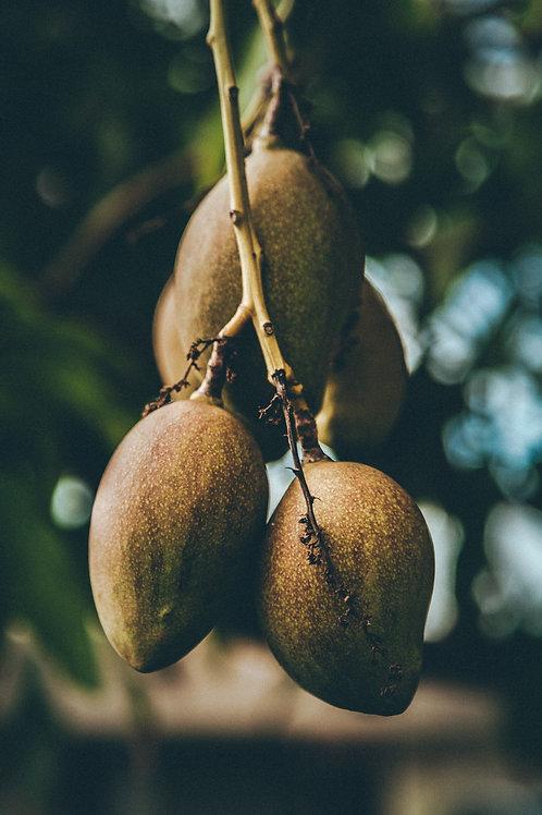 Mermelada de Kiwi con Limón