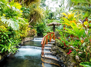 A beautiful staircase winds up alongside a cascading waterfall in the jungle of Costa Rica. Plan my trip to Costa Rica