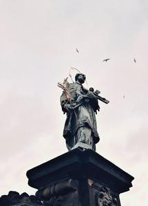 Image by Cecilia Rodríguez Suárez