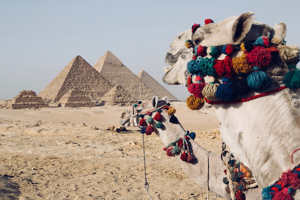 At the center of the world's history is Egypt.