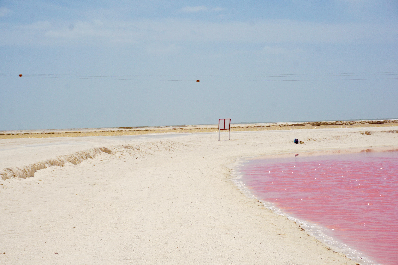 Pink lakes Las Coloradas © Chelsea Aaron