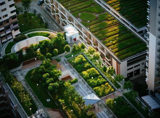 The EU's new natural capital finance facility