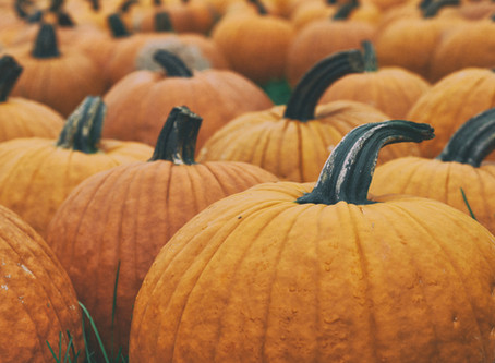 Add Fall Decor to Your Home in 3 Easy Steps