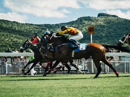 THINGS YOU MAY HAVE ALWAYS WANTED TO KNOW ABOUT HORSE RACING (BUT DIDN'T WANT TO ASK)