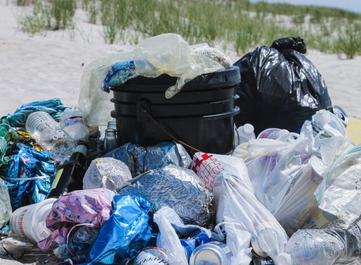 """What is """"Microplastic Pollution"""" & What Can You Do About It?"""