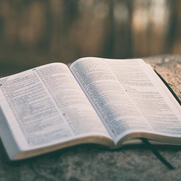 Biblical Counselling II Virtual or In Person Class