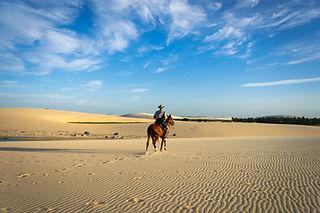 Cavalcata nel deserto nel nord est del Brasile