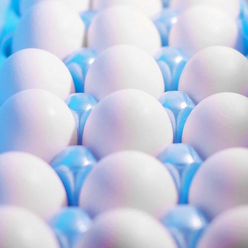 Carton de huevos Med
