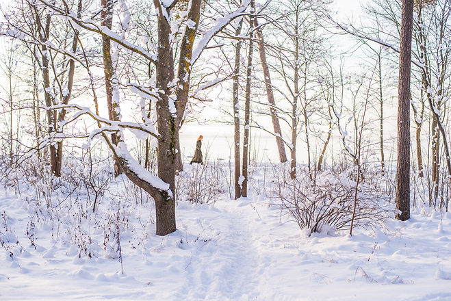 Image by Ilya Orehov