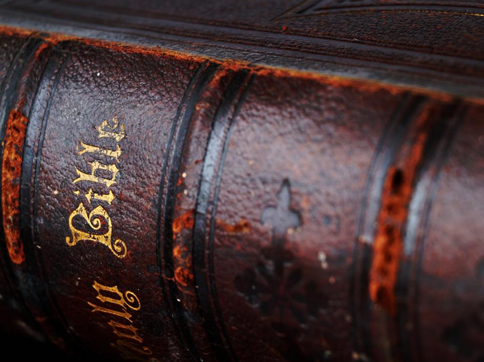 La Biblia de Seguros