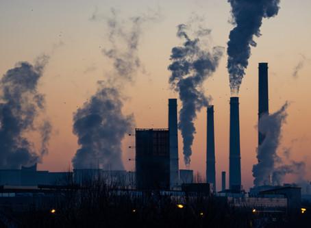 Activism Spotlight : Environment / Climate Change