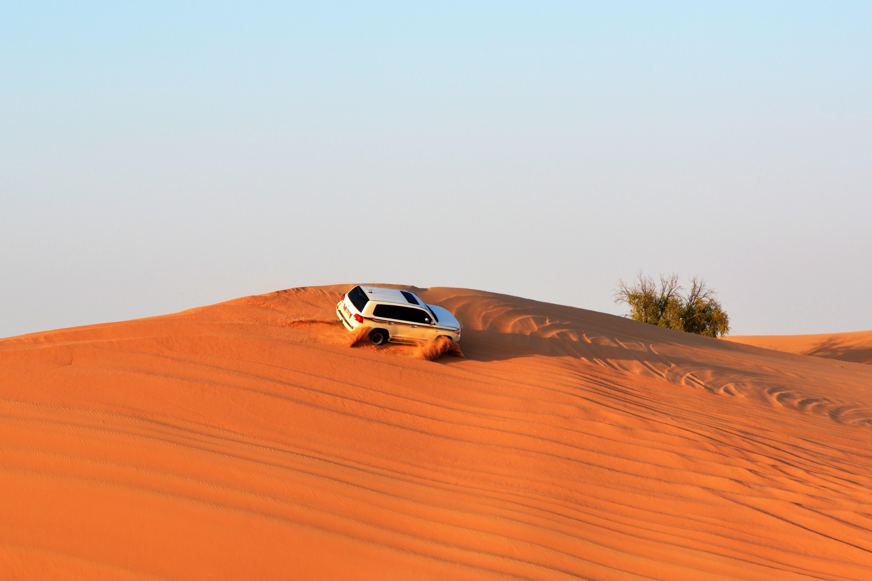 Desert Escort