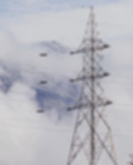 Neutralité carbone entreprise suisse