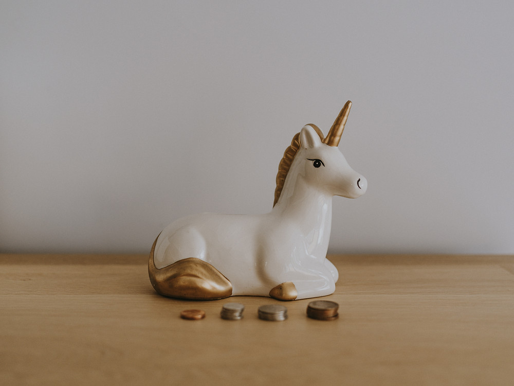 This image is about a unicorn and value for money at Yogalize yoga studio