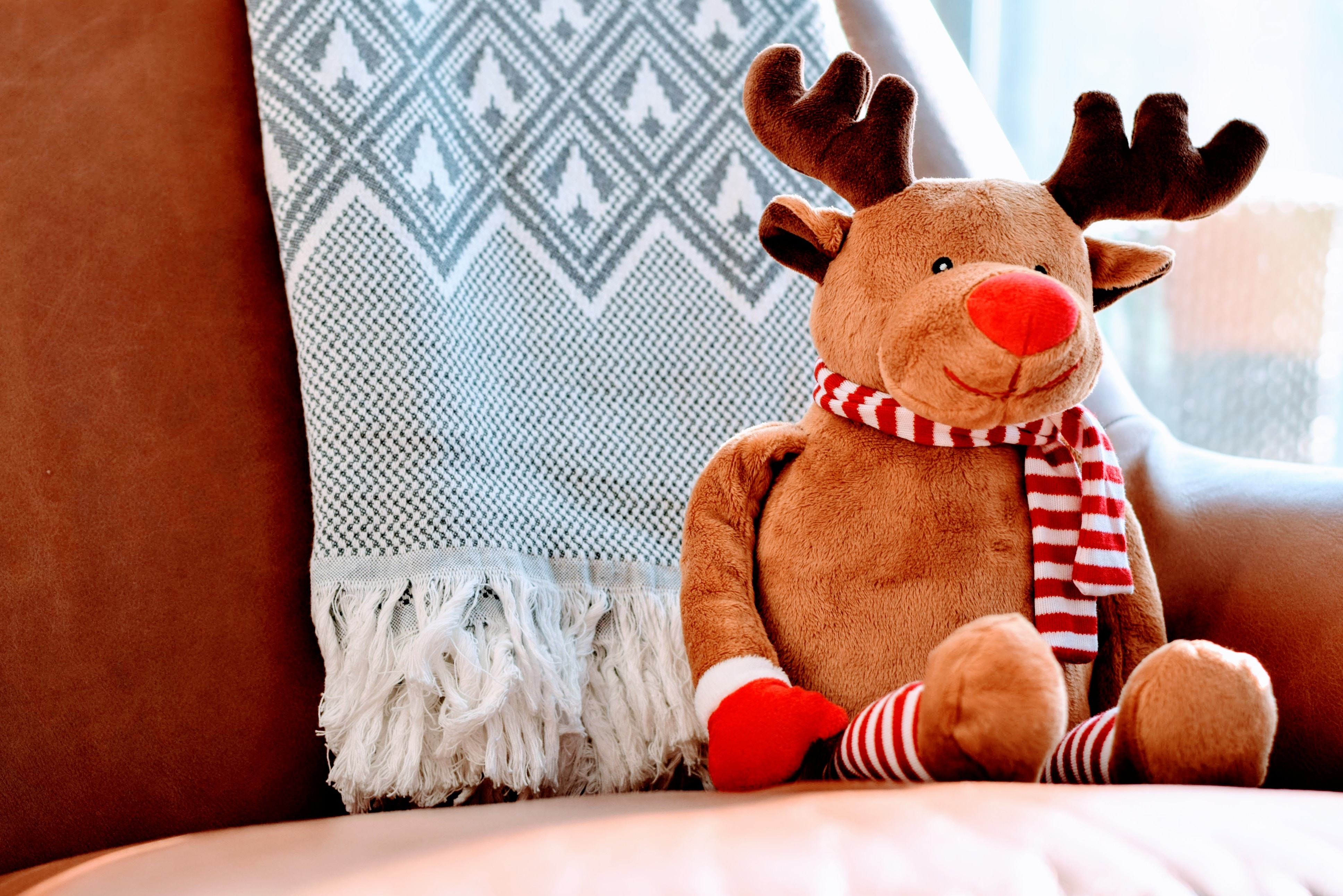 The Rudolf