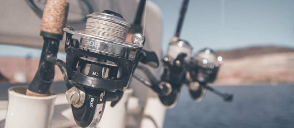 Guide to Planning a Fishing Trip