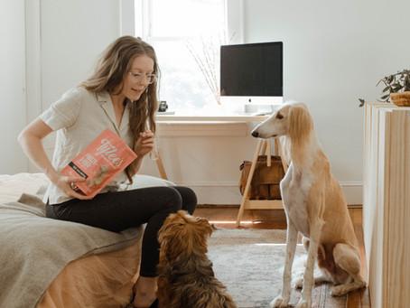 4 dicas de enriquecimento ambiental para cachorros