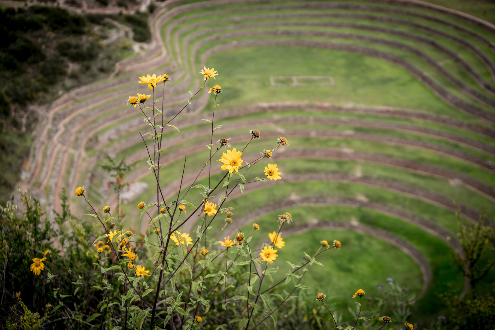 Moray farming terraces