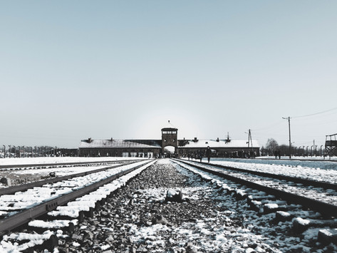 """ד""""ר יהודית קוזניצקי גנדלר  יום הזיכרון הבינלאומי לזכר קורבנות השואה - 27 בינואר"""