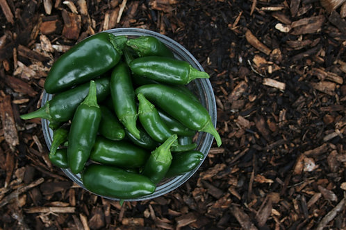 Small Green Chillies (150gm)