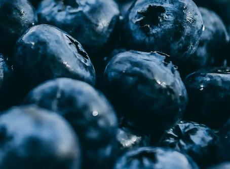Blueberries | Shayleene MacReynolds