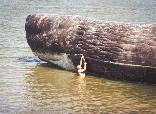 WHALE STINK SHOWS NO SIGN OF STOPPING