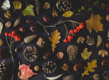 Falling For Autumn Scents