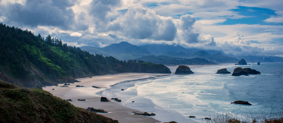 Wild Wonders of the Pacific Northwest