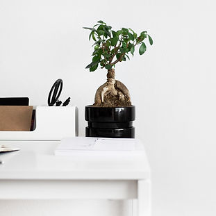 Organized office desk by Sarah Dorweiler