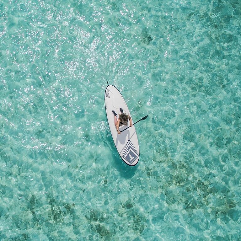 Beginner paddleboard lesson  (1)
